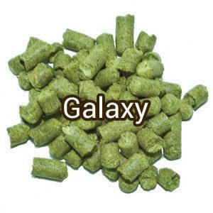 Хмель Galaxy